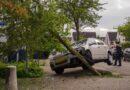 Auto tegen een boom in de Landgoederenbuurt